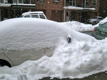 met snowday 028.jpg